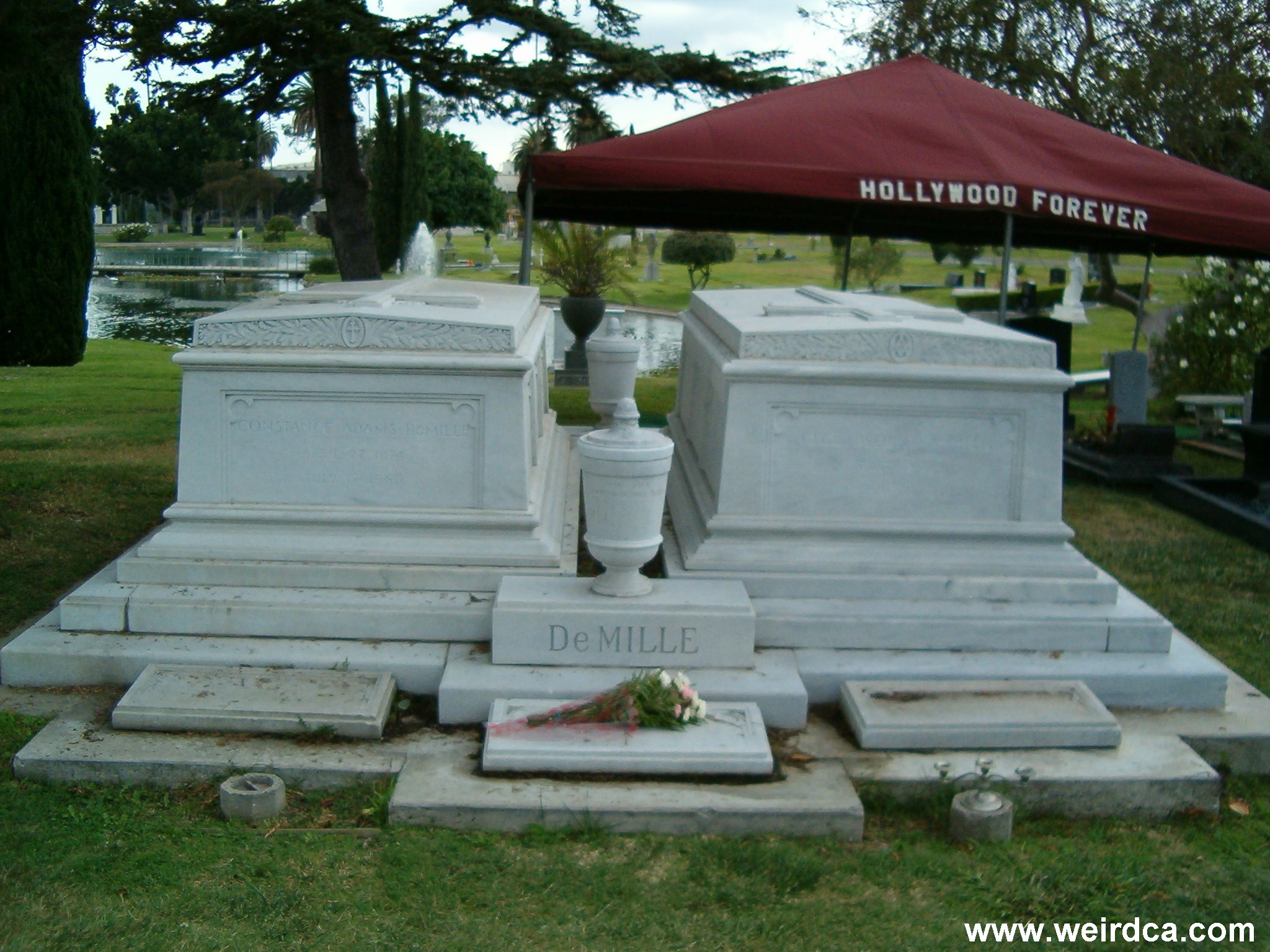 Hollywood celebrity gravesites liz