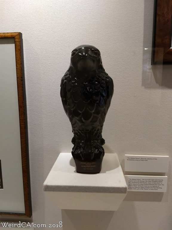 the maltese falcon bird