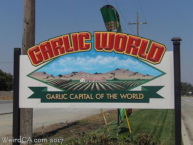 garlic world45