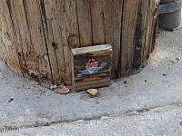 A Gnome in Oakland