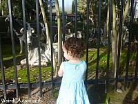 Tiffany checks out the Alamo Menagerie