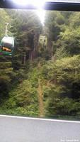 On the SkyTrail