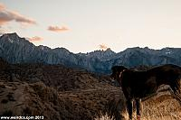 Ruby takes in the beauty of Alabama Hills.