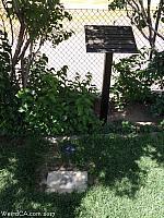 Avelino Martinez's grave site in Tehachapi's Westside Cemetery