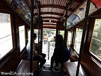 angelsflight18