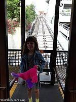 angelsflight24