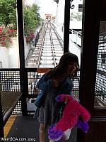 angelsflight26