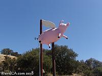 Flying Pig of Topanga
