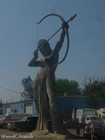 An Amazon Archer near Dr. Fox's office