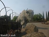 A Giant Buffalo