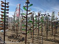 Elmer's Bottle Tree Ranch has over 200 bottle trees!