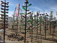 Elmer's Bottle Tree Ranch has over 200 bottle trees!
