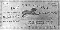 San Diego Dog License