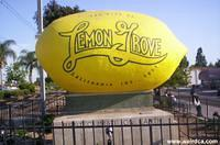 The Giant Lemon of Lemon Grove - Best Climate on Earth