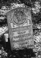 The Grave of Charlotte Sitton