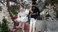Christmas Scarecrows in Cambria
