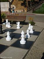 A bunch of the white pieces from the Morrow Bay Chess Set