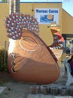 Chamber of Commerce Clam - Thanksgiving