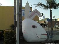 Chamber of Commerce Clam - Easter