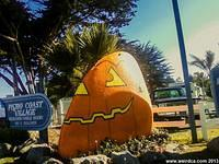 Route 1 Clam - Halloween