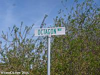 Octagon Way