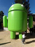 The Android Robot