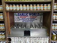 garlic world40