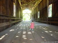 Tiffany crossing the Felton Covered Bridge