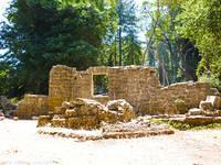The Henry Miller Ruins of Mount Madonna