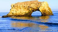 Natural Bridges State Beach had something wash ashore back in 1925!