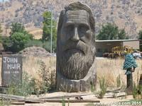 The Head of John Muir