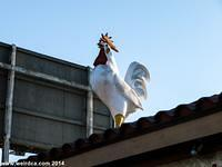 Compton has a giant rooster on top of a chicken restaurant.