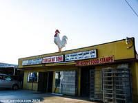 Midway City - Baladi Poultry