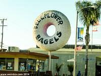 Bellflower Bagels