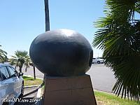 Giant Black Olive