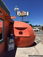 Shasta Lake Giant Orange