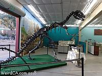 Dinosaur in gift shop
