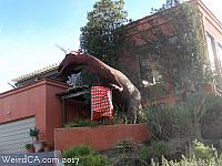 Pismo Beach T-Rex in the Christmas Spirit!