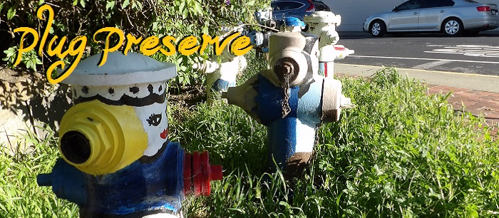 Plug Preserve is a where old painted fire hydrants in Brisbane go to retire!
