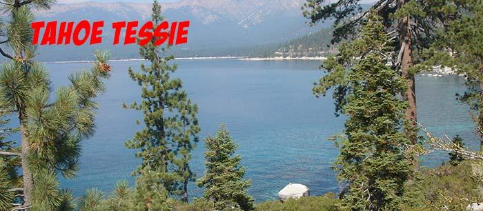 Tahoe Tessie