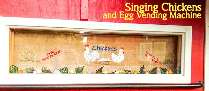 Singing Chickens and Egg Vending Machine