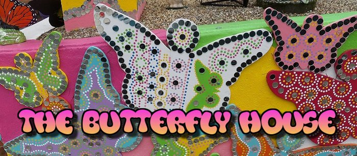 Hundreds of brightly colored butterflies cover the Butterfly House in Pacific Grove!